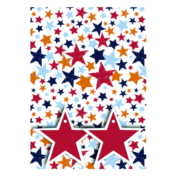Paper Star Print Gift Wrap and Tags (12 Pack) 27240-2S2T