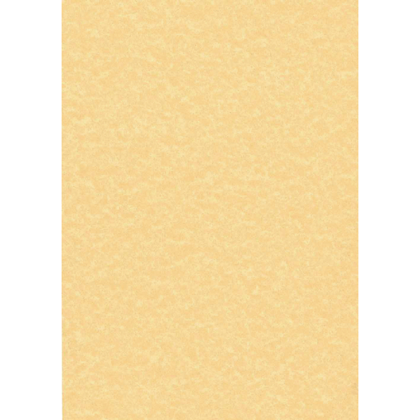 Decadry Parchment Letterhead A4 Paper 95gsm Gold (100 Pack) PCL1600