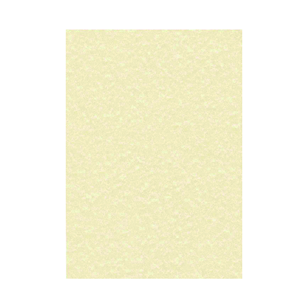 Miscellaneous Decadry Parchment Letterhead A4 Paper 95gsm Champagne (100 Pack) PCL1601