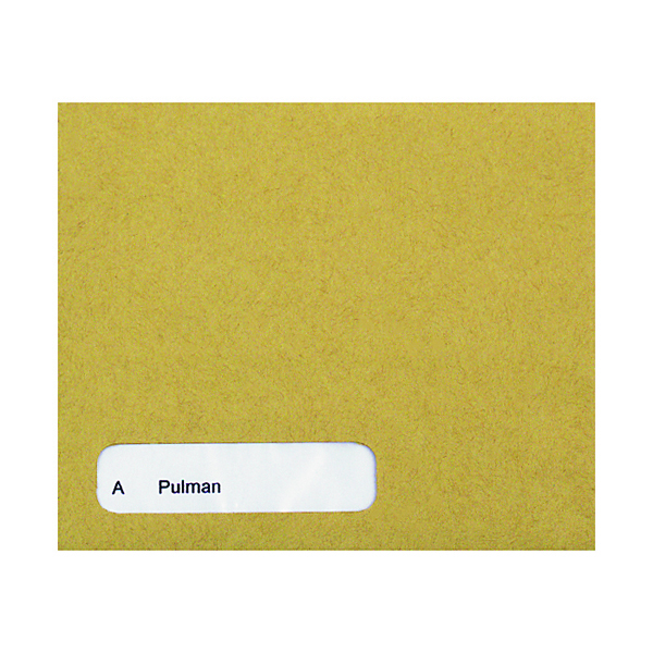 Other Monies Custom Forms Sage Wage Envelope (1000 Pack) SE45