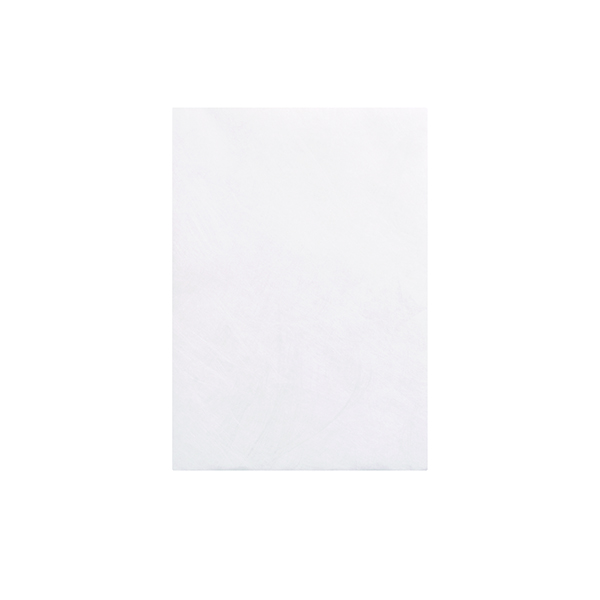 Tyvek C5 Envelope 229x162mm Pocket Peel and Seal White (100 Pack) 551024