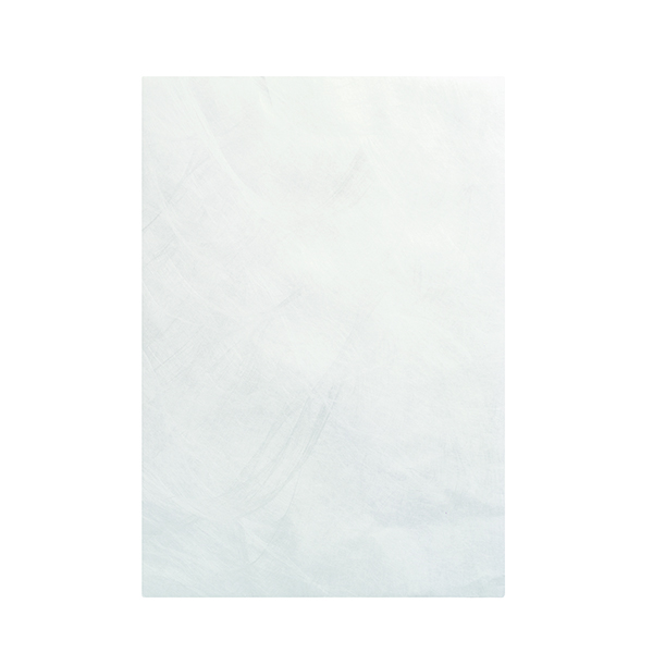 Tyvek Envelope 324x229mm Pocket Peel and Seal White (100 Pack) 555024
